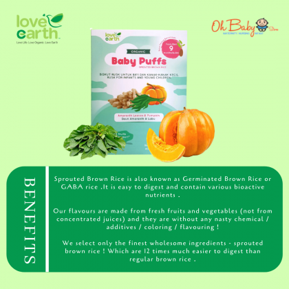 Love Earth Organic Baby Puffs Amaranth Leaves & Pumpkin (10g x 4 packs)