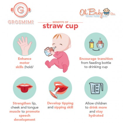 Grosmimi Stainless Straw Cup 300ml For 10M+