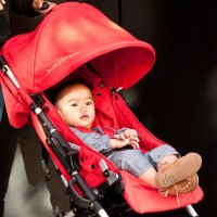 Bumbleride - Flite Stroller Lotus