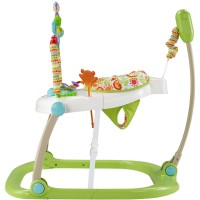 Fisher Price - RainForest Friends SpaceSaver Jumperoo
